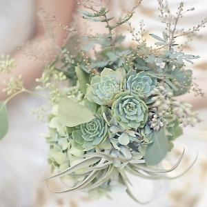 floral ideas, wedding flowers, wedding arrangements, succulents, mint green wedding, vintage wedding color scheme, wedding floral ideas, 2014 wedding ideas,  Janet Dunnington Events favorite succulent bouquet